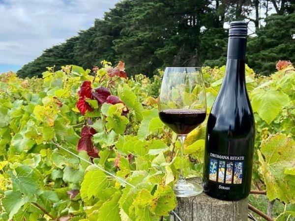 Dromana Estate: Premium Australian wine producer of Mornington Peninsula