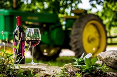 Photo for: From Penn's vineyard to Pinot Noir: How Pennsylvania became one of America's most fascinating wine regions