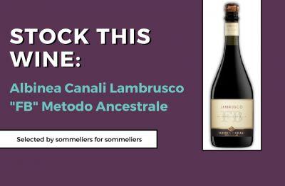 Photo for: Stock This Wine: Albinea Canali Lambrusco