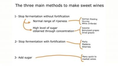 Photo for: Overview of sweet wines making