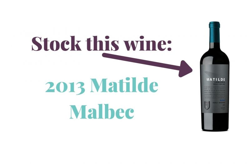 Photo for: Stock this wine: 2013 Matilde Malbec