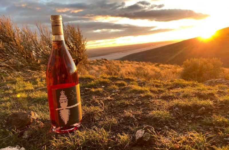 Photo for: How Covid affected America's winemakers: Sin Banderas, Washington State