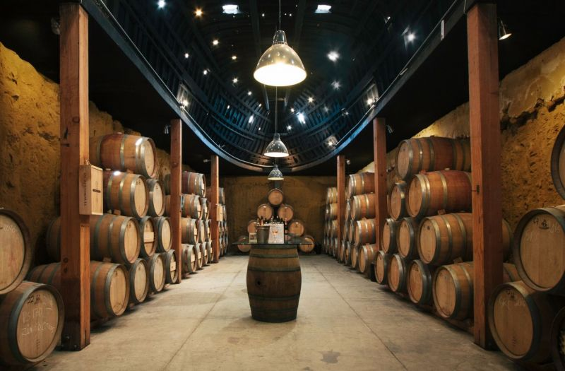 Photo for: Mexico's Blooming Wine Region: Valle de Guadalupe