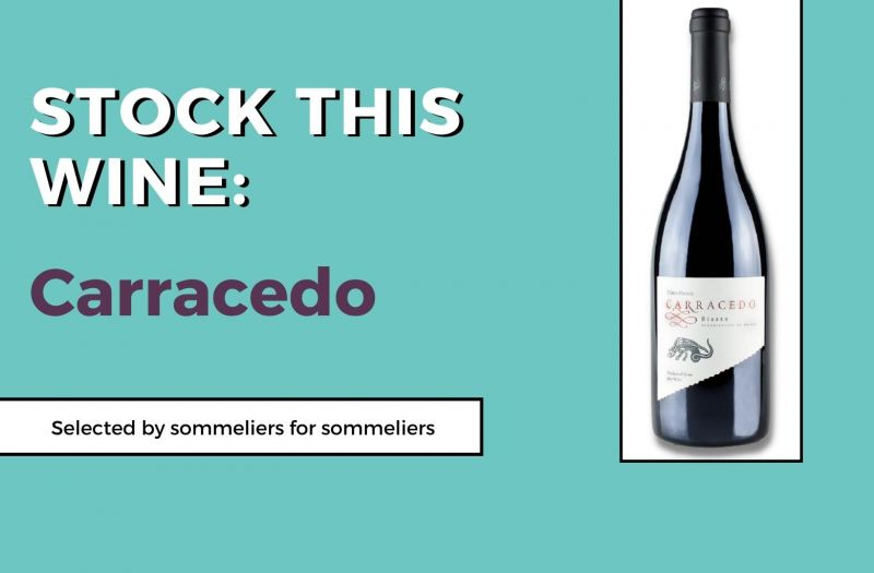 Photo for: Stock This Wine: Carracedo by Bodega del Abad, S. L.