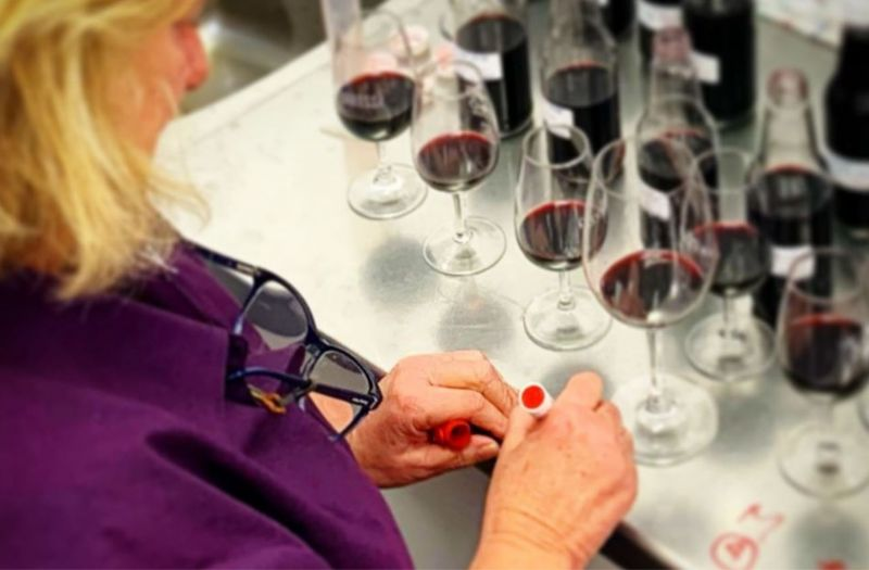 Photo for: Lévrier Wines by Jo Irvine now looking to expand in USA